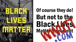 black lives matter divides